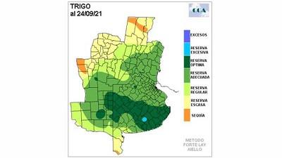 El trigo del centro comienza a definirse – CCA/Agrositio