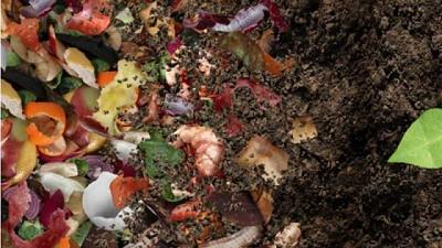 ¿Qué es el compostaje pasivo o frío? Cuándo y por qué puede ser útil