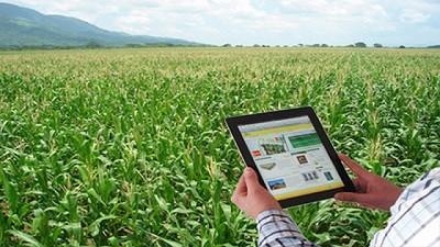 La agricultura sin innovación no existe