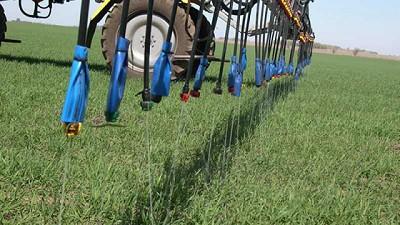 Los fertilizantes, proveedores de nutrientes para nuestros alimentos